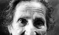 Como tratamos os nossos idosos?